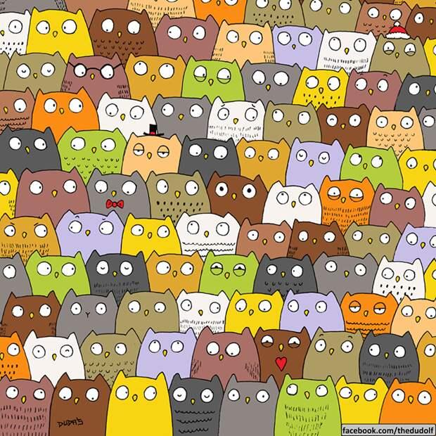 Найдите кошку среди сов. Пара веселых рождественских головоломок