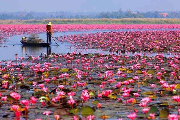 20 снимков невероятной природной красоты