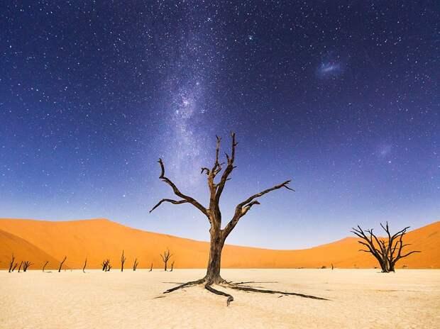 В центральной части пустыни Намиб