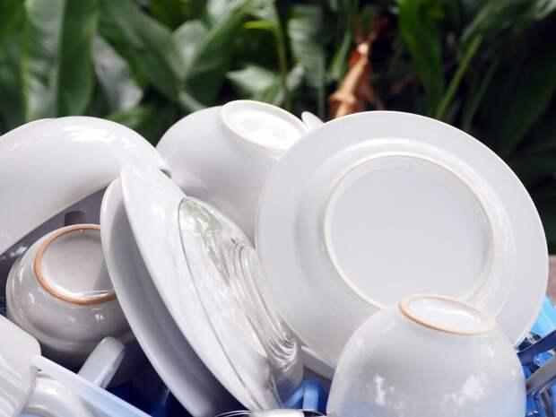plate-1767422_1280-1024x768 Моем посуду правильно: тонкости и советы