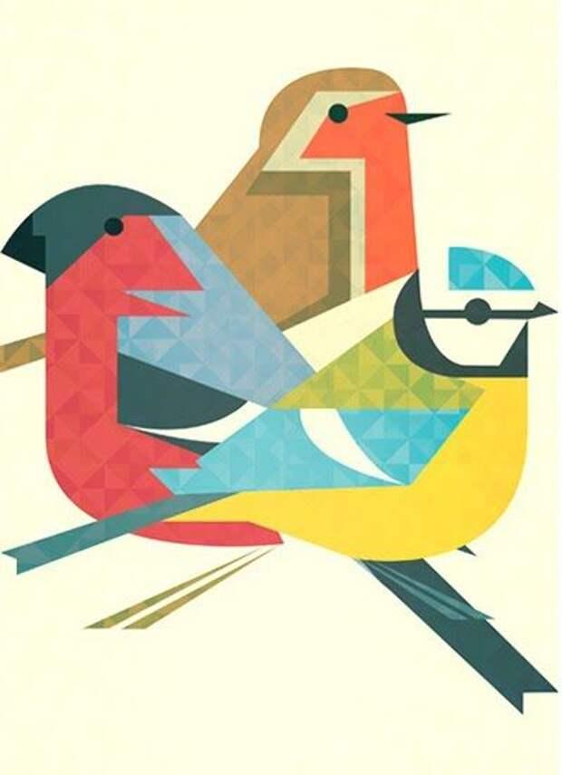 three bird illustration