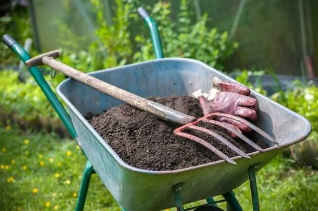 6 способов, которые помогут удерживать воду в почве