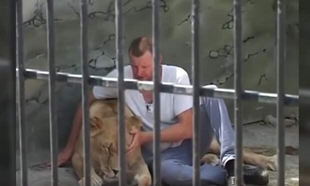 10 невероятных историй о дружбе людей с дикими животными