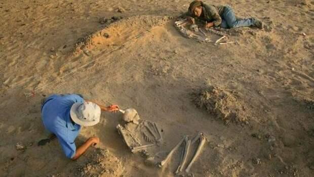 Экспертиза в Германии раскроет тайну огромных эквадорских скелетов