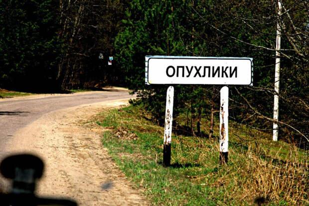 Опухлики и Суета: аналитики определили самые необычные названия населенных пунктов в России