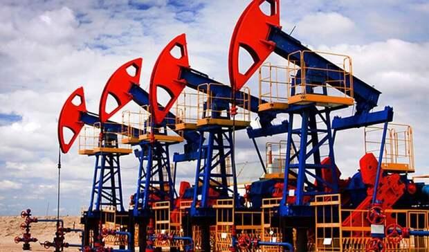 До7,44млн б/с снизится добыча сланцевой нефти вСША вянваре 2021