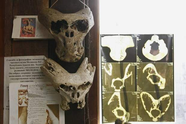 Чемоданчик Аненербе в Адыгее и странные черепа. Новое исследование