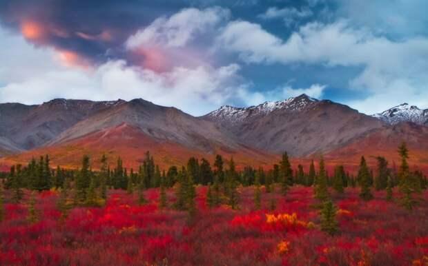 17 фотографий, доказывающих, что осень - самое красивое время года