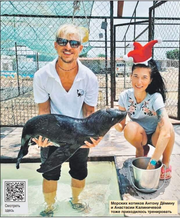 Зоопсихологи из Строгина пятнадцать лет тренировали зверей на разных континентах