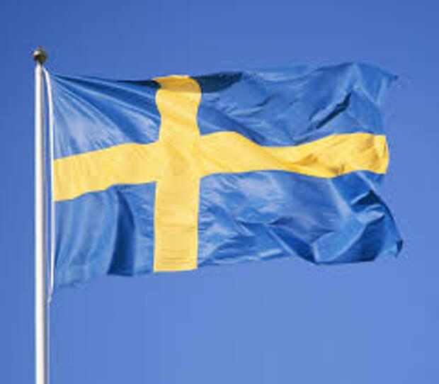 Швеция повысила боеготовность армии из-за украинского кризиса