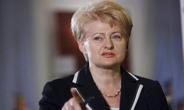 Грибаускайте отправила делегацию в Россию разгребать свои промахи