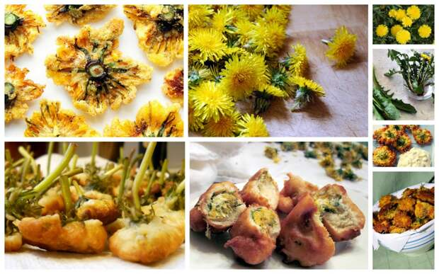 Одуванчики в стиле Апалачи дача, рецепты, сорняки