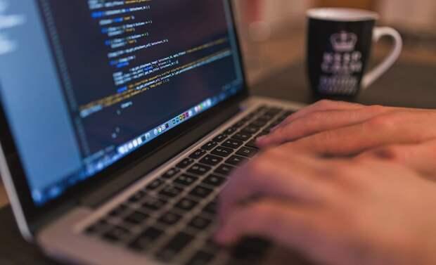 Жителям России грозит большая волна интернет-мошенничества