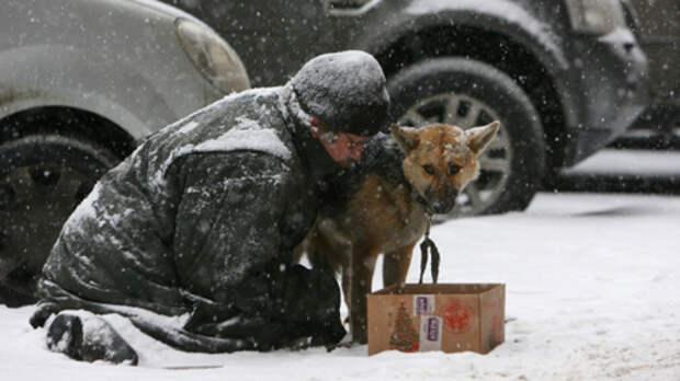 Шнуров и Шевчук спели в поддержку питерских бездомных