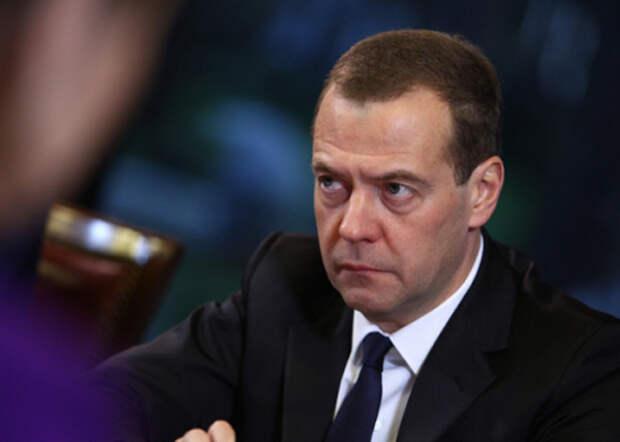 Медведев, ОНФ, встреча|Фото: ОНФ