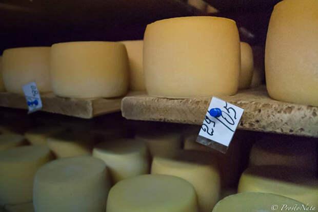 Как делают настоящий украинский сыр