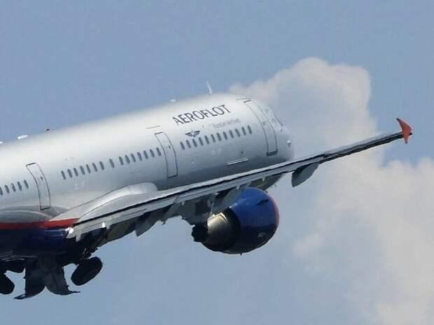 Самолет из Волгограда готовится к аварийной посадке в Шереметьево