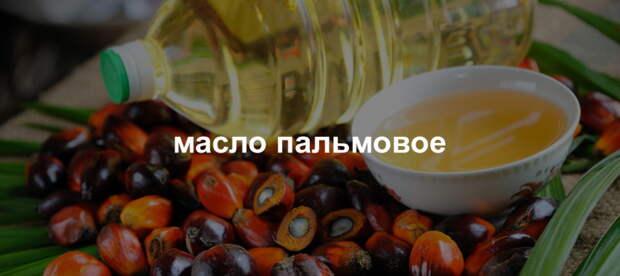 Как вычислить пальмовое масло в продуктах