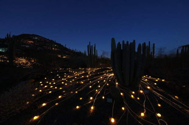 Световая инсталляция