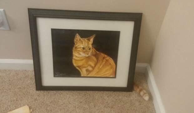 Фотографии котов, сделанные в самый нужный момент