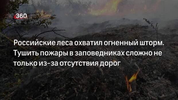 Российские леса охватил огненный шторм. Тушить пожары в заповедниках сложно не только из-за отсутствия дорог