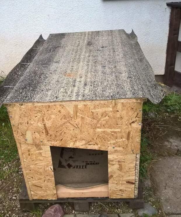 Да, просто листы ДСП. Но будка просторная, не пропускает дождь и ветер и достаточно теплая для мохнатой акиты.