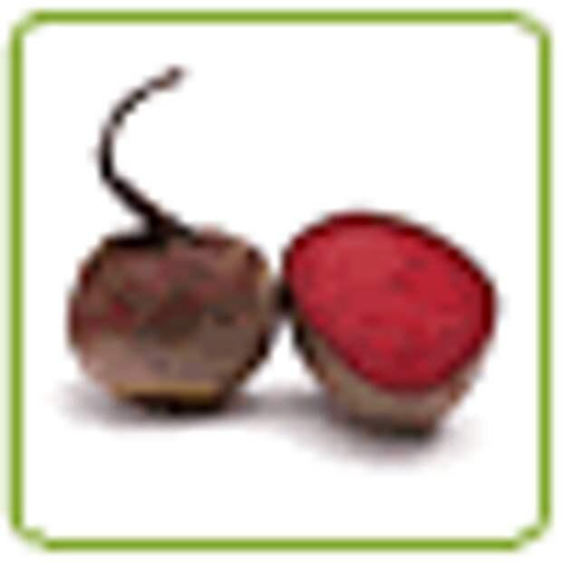 Как готовить закуску карпаччо из груши, авокадо и свеклы