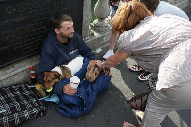 14. Бездомный с собакой и кроликом  бездомный, любовь, собака
