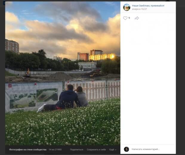 Фото дня: романтикам в Свиблове у пруда хорошо и без воды