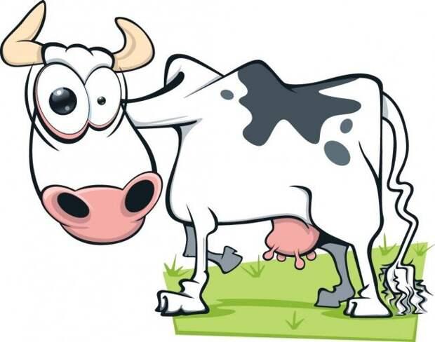 РОДНАЯ РЕЧЬ. Фразеологизмы. Молоко от бешеной коровки