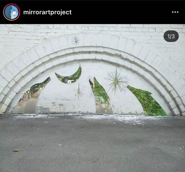 Фото дня: зеркальные волки на Вятской
