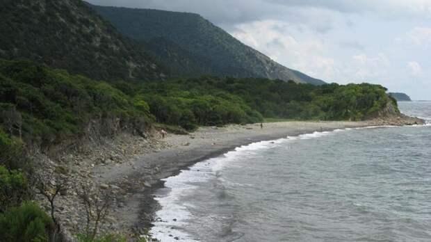 Часть полуострова Абрау присоединят кзаповеднику «Утриш»