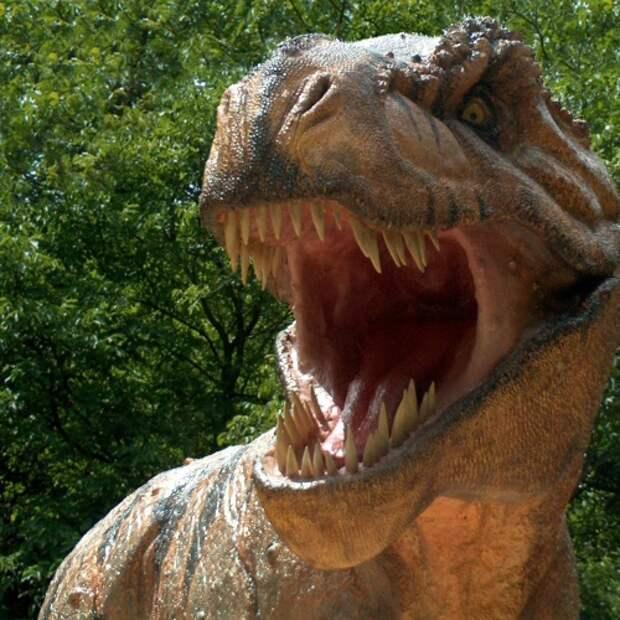 Британские учёные: динозавры не вымерли, а превратились в птиц