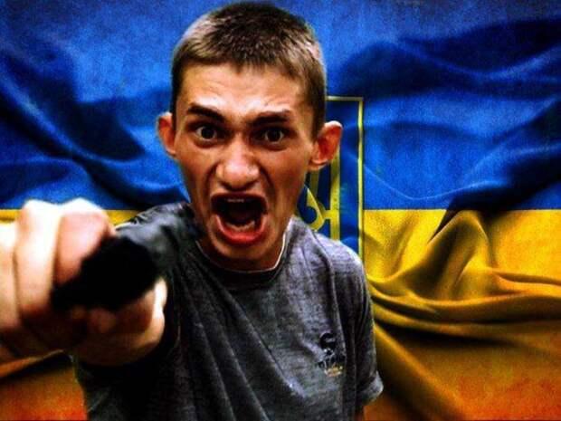 Ограбление по-украински: ПодОдессой разбойники похитили 21тонну телятины