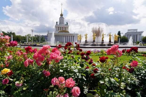 ВДНХ впервые опубликовала карту цветения роз