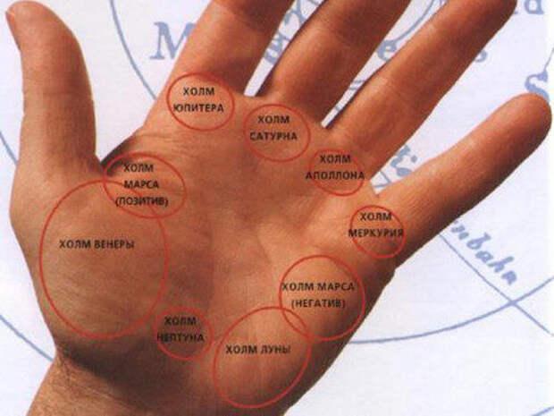 Хиромантия: знаки удачи и богатства на руке