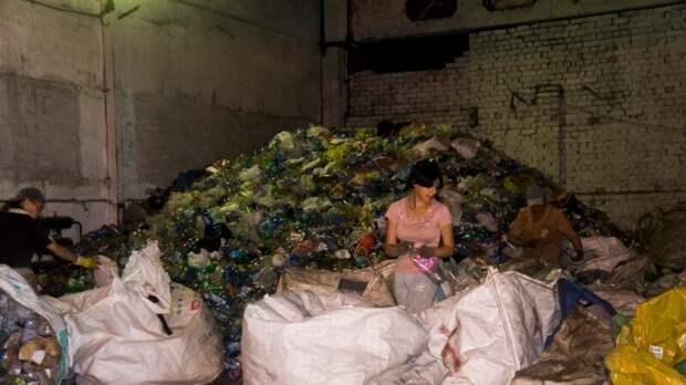 """В Сибири пластик в мусоре не доходит до переработки – """"Гринпис"""""""