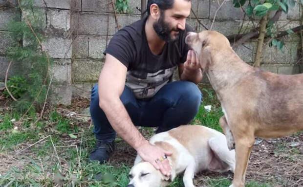 Парень забрал с улицы больного и истощенного пса и полностью изменил его жизнь. Только взгляните как он выглядит сейчас!