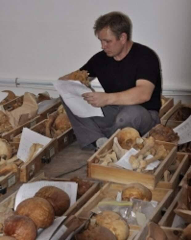 Ученые завершили антропологический анализ найденных на Аркаиме сарматов