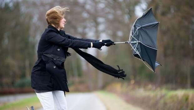 Жителей Подмосковья предупредили о порывистом ветре