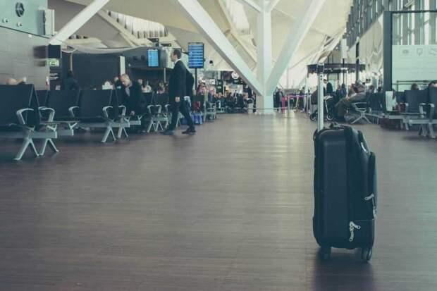 В аэропорту Внуково кубинец угрожал покончить с собой: ему не дали правильный билет (видео)