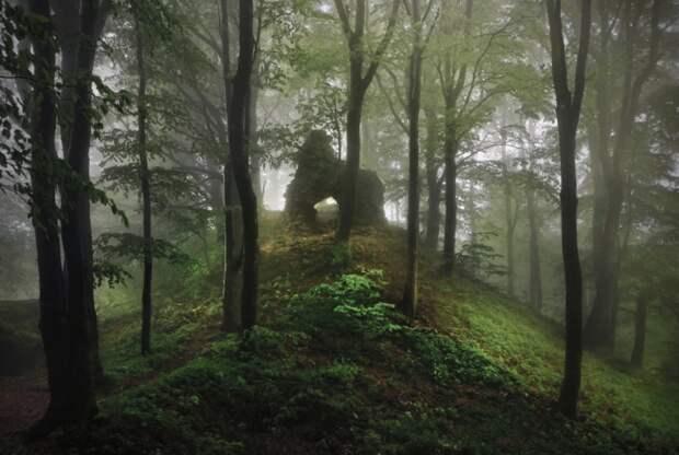 Завораживающие фотографии с родины братьев Гримм гримм, фото