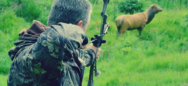 Стрельба из лука.