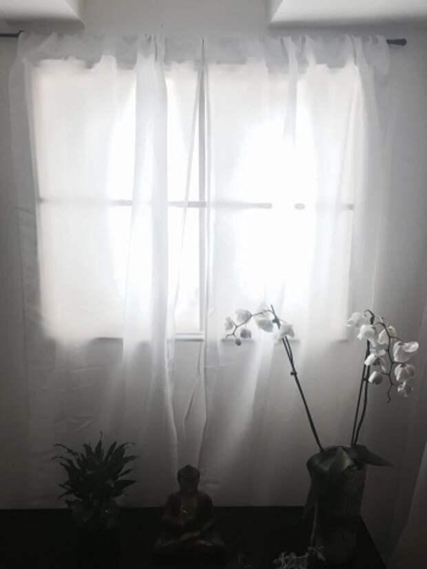 В такое окно, конечно, не выглянешь на улицу, но зато с ним в помещении становится гораздо комфортнее!