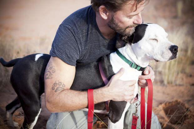 #УченыйПривет: сердца собаки и ее хозяина бьются в унисон