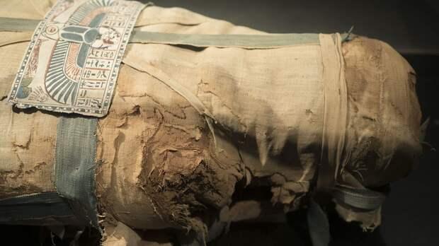 Несколько мумий, статуи божеств и много золота: очередные находки археологов на египетском кладбище