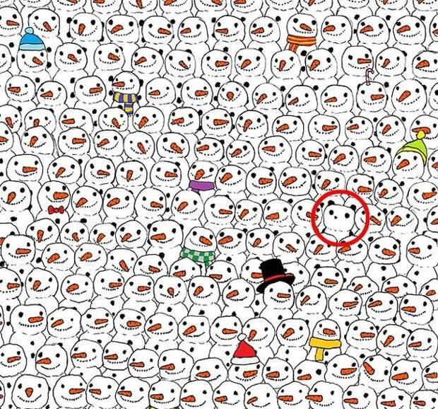 """Головоломка """"Найди панду"""", которая покорила Интернет"""