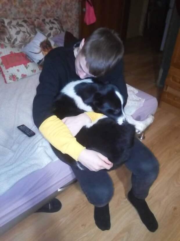 Девушка несла на руках больную собаку, шепча ей, что всё будет хорошо…