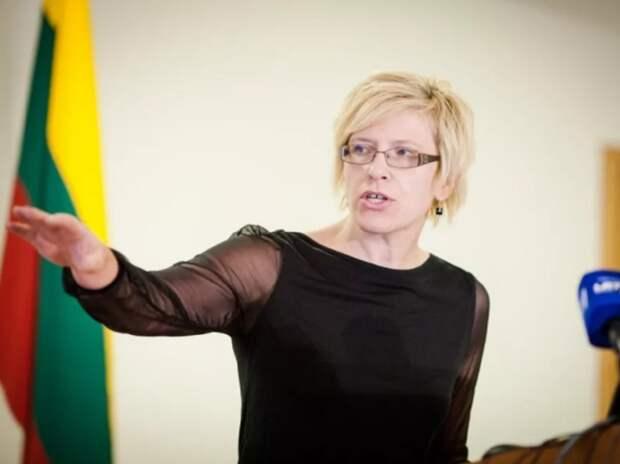 В Литве оценили ультиматум своего премьера против России: «Еще спасибо Путину»