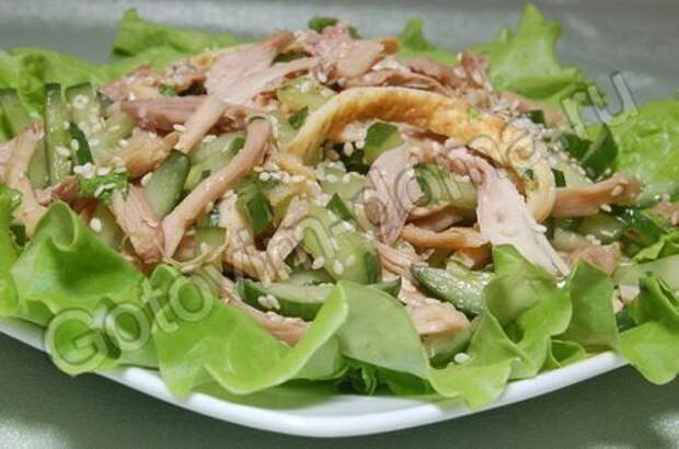 http://retsepty-s-foto.ru/uploads/recipe/zakuski14/salat-iz-myasa-pticy-so-svezhimi-ogurcami_3280.jpg